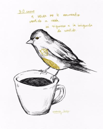 Serie Pájaros 2