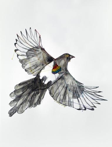 Serie Pájaros 8 / Pájaro LGBT