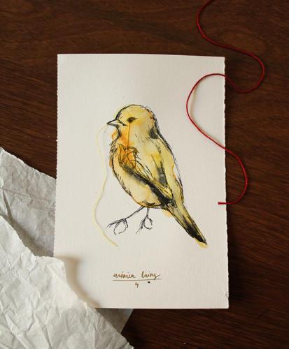 Serie Pájaros 4
