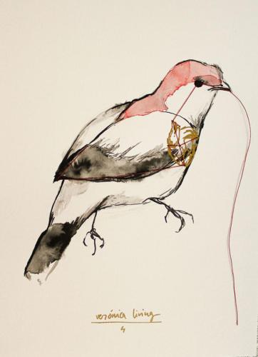 Serie Pájaros 5