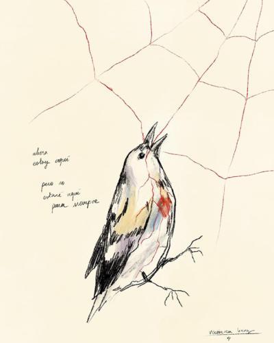 Serie Pájaros 3 / Ahora estoy aqui