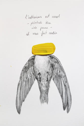 Serie Pájaros 6 / l intèrieur est cruel
