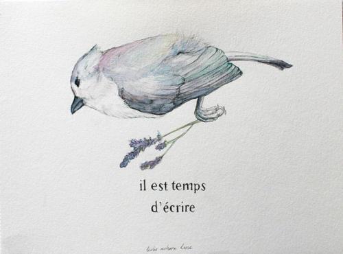 Serie Pájaros 1